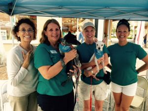 Lakewood Ranch Main Street Adoption Event